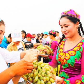 The Turpan Grapes